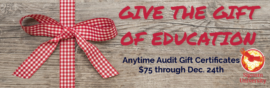 Anytime Audit Gift Certificate Promo
